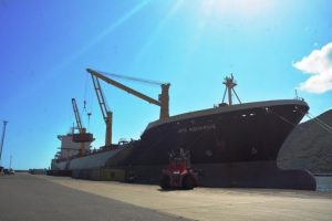 Contenedores con artículos y rubros de primera necesidad son descargados en el puerto de Puerto Cabello