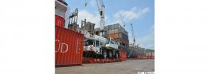 Arriban al Puerto de Puerto Cabello alimentos e insumos destinados al sector agroindustrial