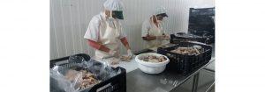 Ministerio de Pesca supervisó a empresas aliadas de Nueva Esparta