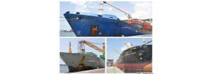 Embarcaciones con materia prima y agroquímicos fueron atendidas en el Puerto de Puerto Cabello