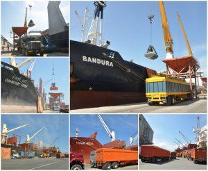 Bolipuertos Puerto Cabello recibe 92 mil 500 TM de materia prima para Sector farmacéutico y alimentario